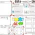 Organizadores gráficos para Trabajo en #Equipo via @Reto_Lab