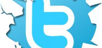 La herramienta twitter (II)